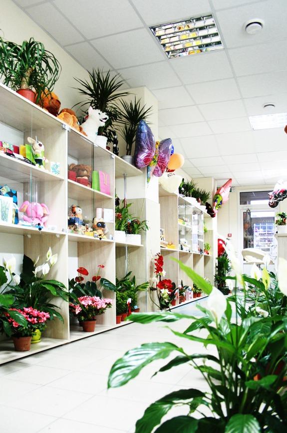 Доставка цветов по Киеву Украине и миру Заказать цветы